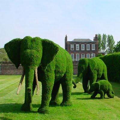 слон от зеленина