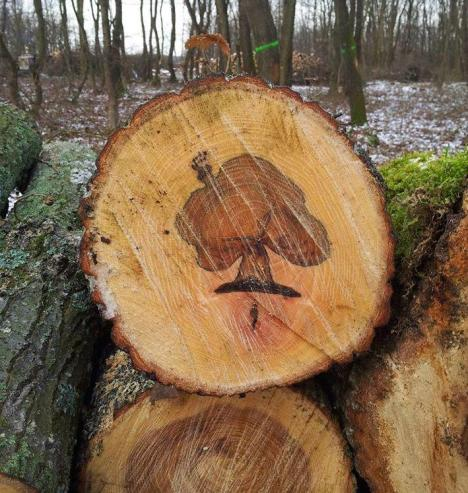 trees_original